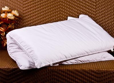 蒲绒二合一枕