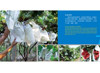 涤纶无纺布应用于农业种植套袋