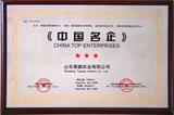 中国供应商中国名企